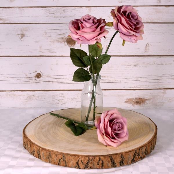 Wood slices 32cm-37cm.jpg